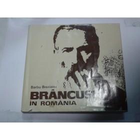 BRANCUSI IN ROMANIA -BARBU BREZIANU