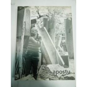 GEORGE APOSTU - SCULPTURA DESEN