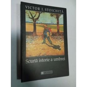 SCURTA ISTORIE A UMBREI - Victor I. Stoichita